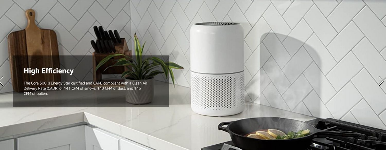 portable purifier buy online